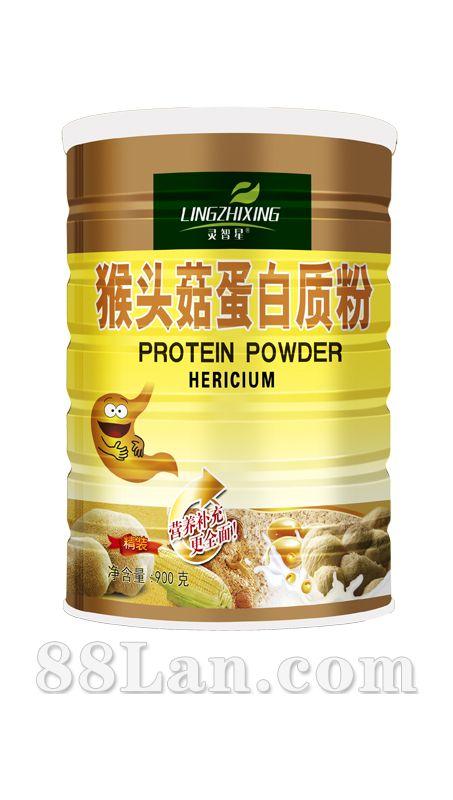 猴头菇蛋白质粉-灵智星