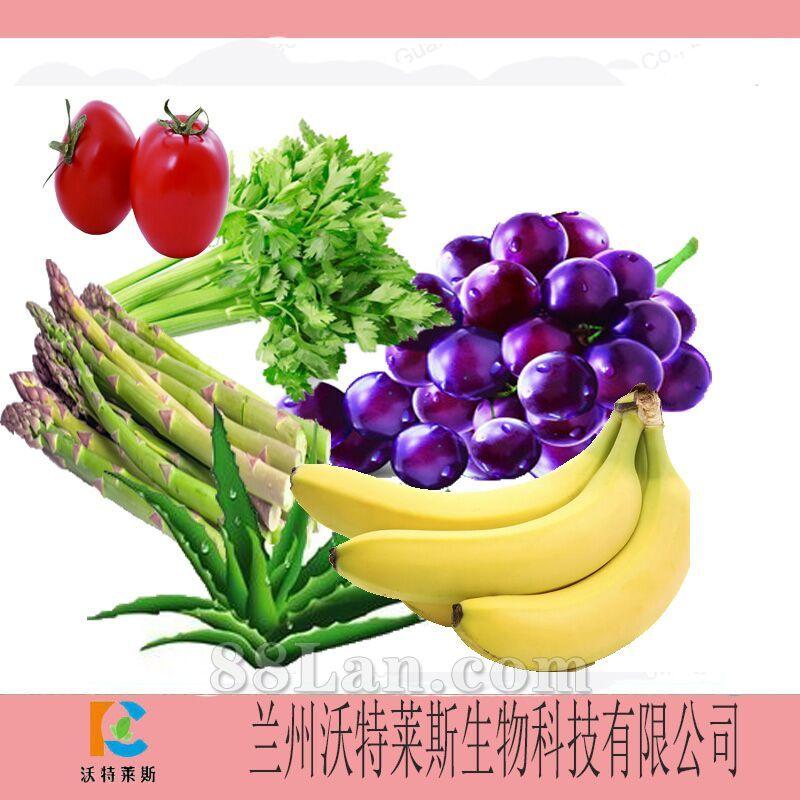 萝卜酵素连山参都无法取代的家庭常备药