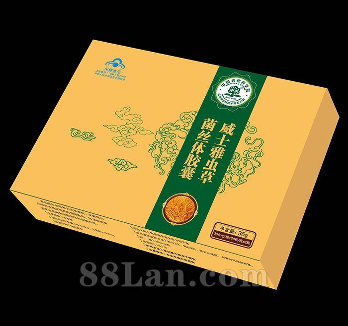 中农虫草菌丝体