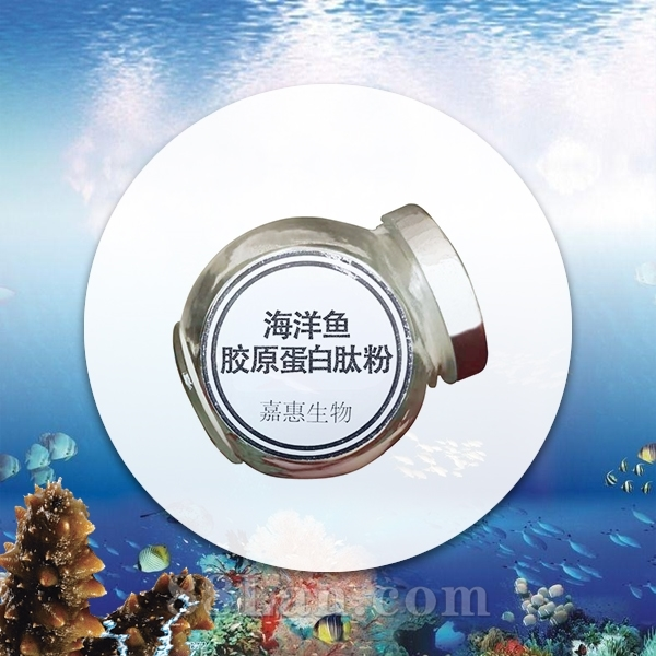 深海鱼胶原蛋白肽-胶原蛋白活性肽-小分子肽-厂家直供