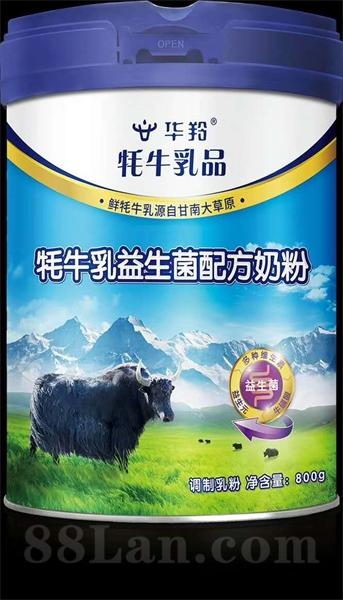 牦牛乳益生菌配方奶粉 调制乳粉 甘南原产  正规乳品 工厂直供