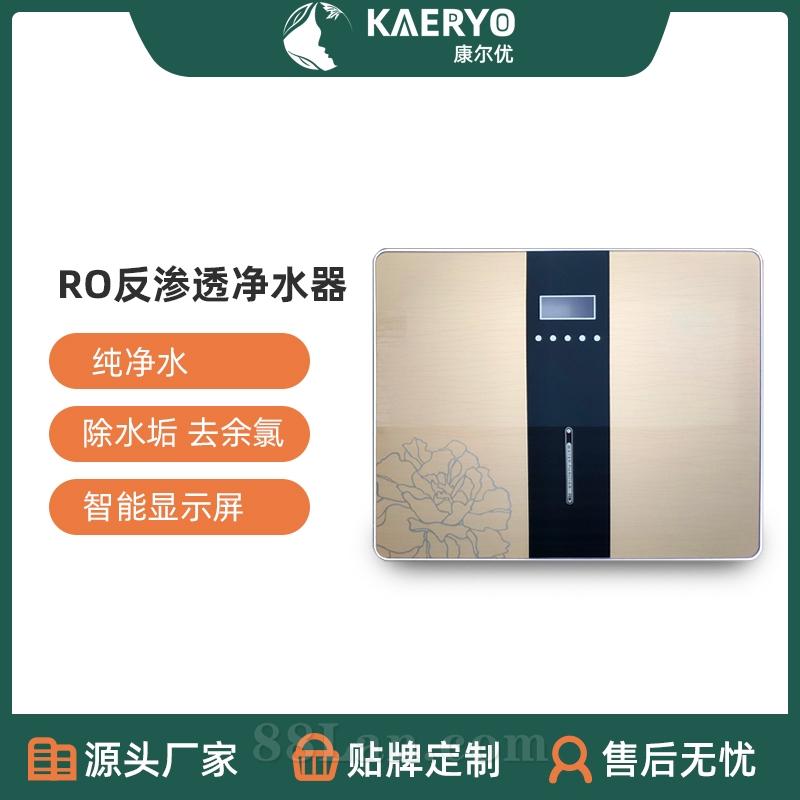RO反渗透净水器