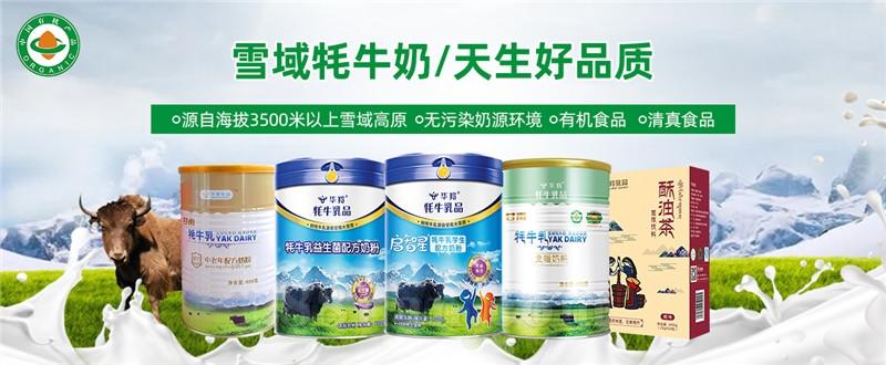 工厂直供 原产(甘南)有机牦牛奶粉、配方牦牛奶粉系列产品 全国招商 oem 原料供应